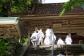 第43番札所・明石寺