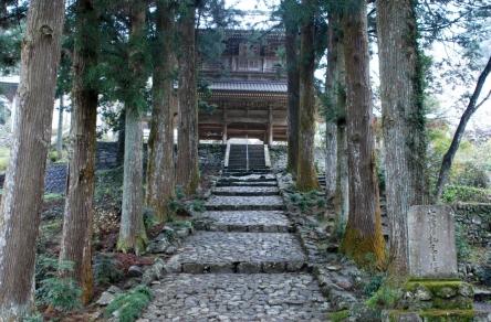 森林浴の森100選・竜沢寺緑地公園