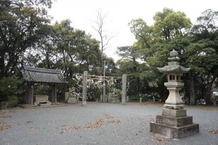 国造神社の樹叢