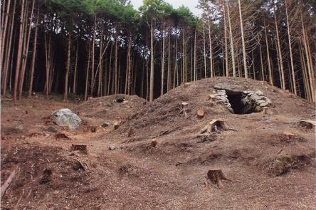 ナルタキ古墳群