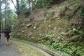 V5 野村の河成段丘