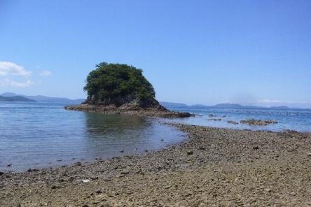 島の元(たこやき島)