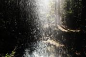 渓筋の樽滝
