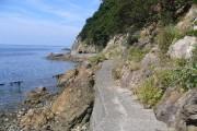 須崎海岸遊歩道03