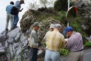 07s石灰岩とチャートの境界