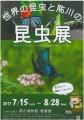 世界の昆虫と肱川の昆虫店チラシ